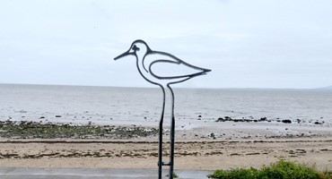 Bespoke signs 'Birds of the Bay'